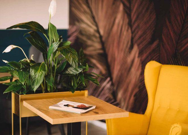 Zdjęcia wnętrz kawiarni Słodka Strefa